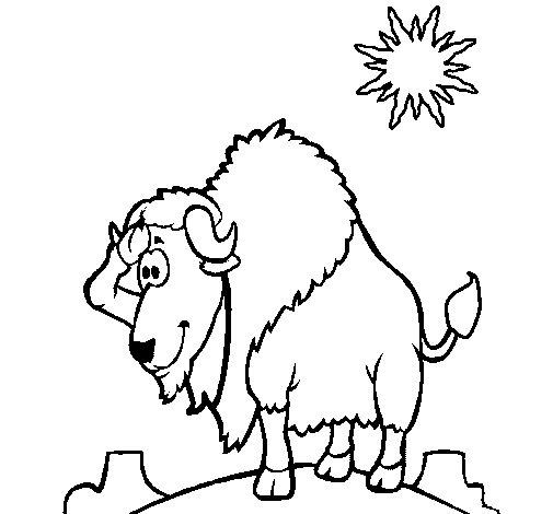 Coloriage de Bison dans le désert  pour Colorier