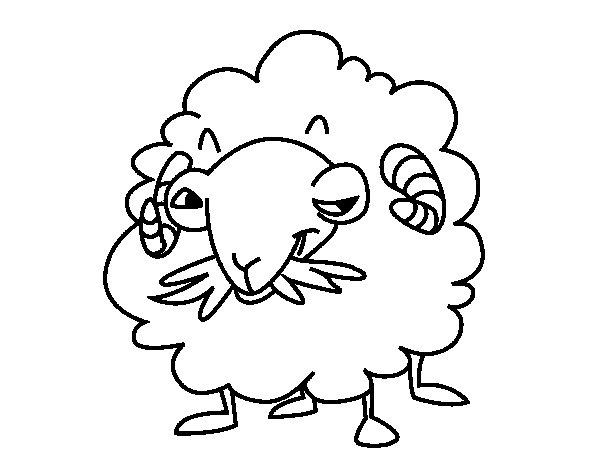 Coloriage de Chèvres angora pour Colorier