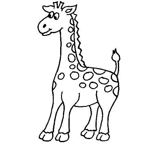 Coloriage de Girafe 4 pour Colorier