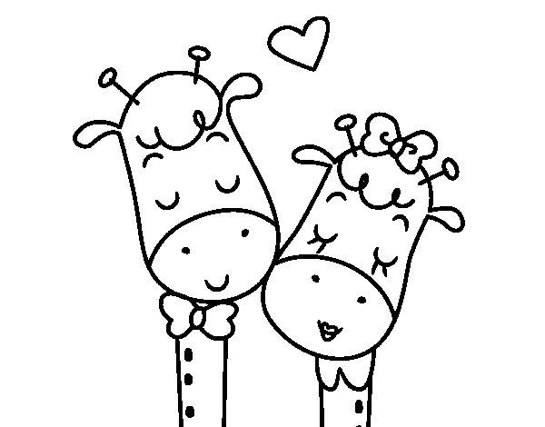 Coloriage de Girafes amour pour Colorier