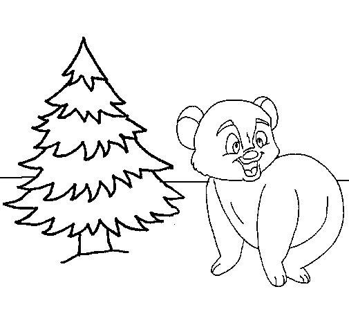 Coloriage de ours et sapin pour colorier - Sapin a colorier ...