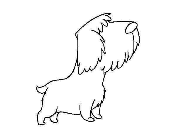 Coloriage de petit chien errant pour colorier - Dessin de petit chien ...