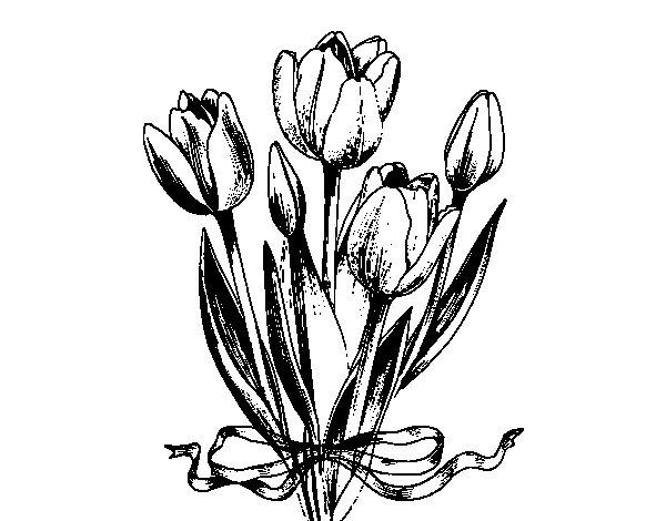Coloriage de Tulipes avec un ruban pour Colorier