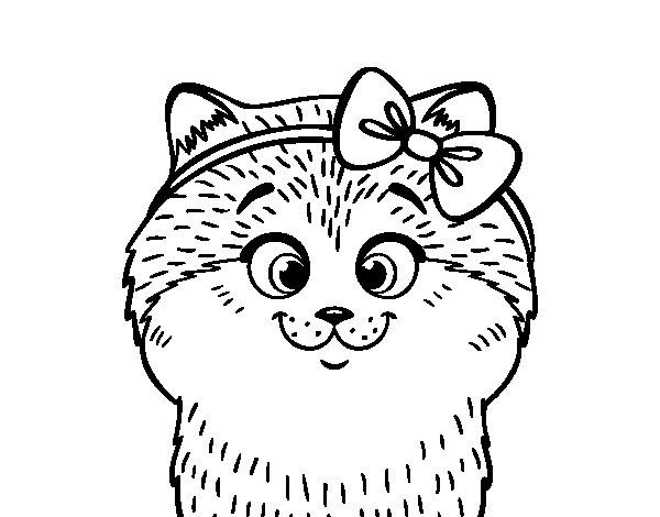 Coloriage de Une petite chatte avec ruban pour Colorier