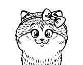 <span class='hidden-xs'>Coloriage de </span>Une petite chatte avec ruban à colorier
