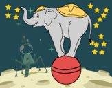 Coloriage Éléphant équilibriste colorié par raphael
