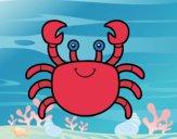 Un crabe