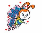 Papillon coquette