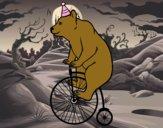 Ours sur un vélo