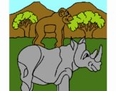 Rhinocéros et singe