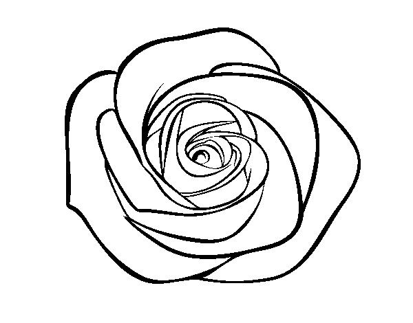 Coloriage De Fleur Rose Gobelune
