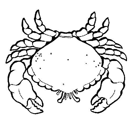 Coloriage de Grand crabe pour Colorier - Coloritou.com